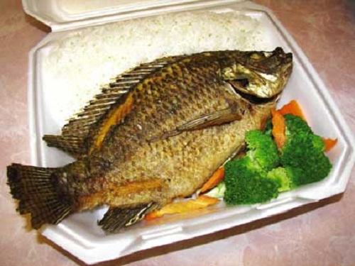 Fa3tFood.Com-Decorated-Fish-Food-23