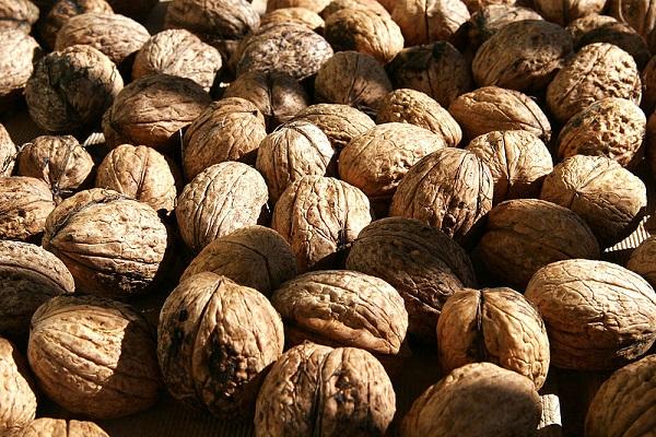 Walnuts02