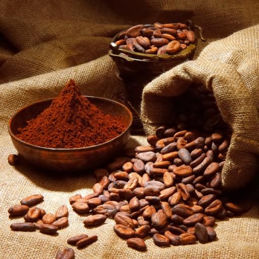 crop_sm_Cocoa-Beans
