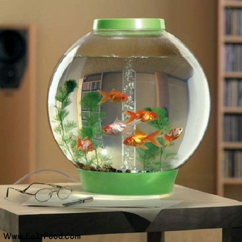 Significant-way-to-decorate-Easter-fishbowl-effect-PHOTOS-12