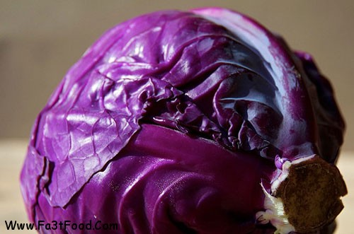 Purple-cabbage-1